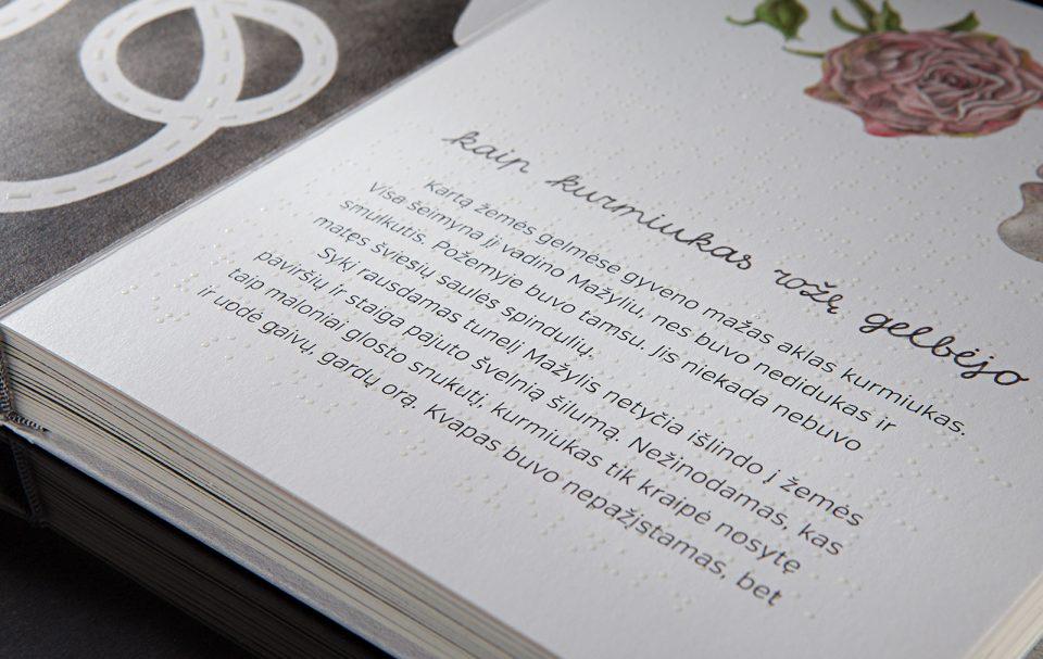 Knyga Užsimerk reginčiųjų ir Brailio raštu